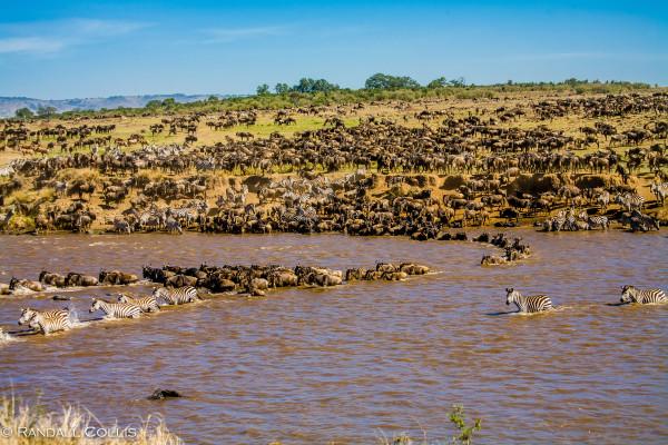 Kenya Maasai Mara Africa-19
